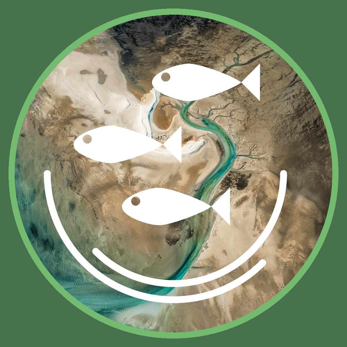 Ecological Stewardship